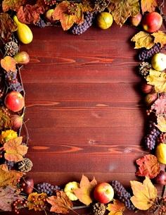 秋の果物と枯葉 フレームの写真素材 [FYI01176319]