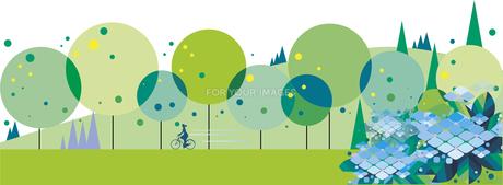 紫陽花と緑の道のイラスト素材 [FYI01176459]