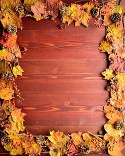 まつぼっくりとたくさんの枯葉のフレーム 茶色木材背景の写真素材 [FYI01176694]