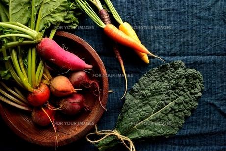 カラフルな根菜の写真素材 [FYI01177142]