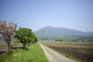 道と田園風景の写真素材 [FYI01177292]