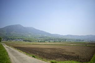 道と田園風景の写真素材 [FYI01177293]