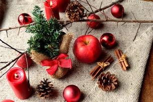 林檎とミニクリスマスツリー ニット生地背景の写真素材 [FYI01177359]