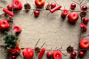 林檎とミニクリスマスツリー ニット生地背景の写真素材 [FYI01177364]