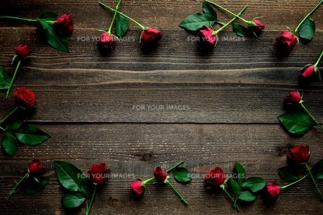赤い薔薇のフレーム 黒木材背景の写真素材 [FYI01177389]
