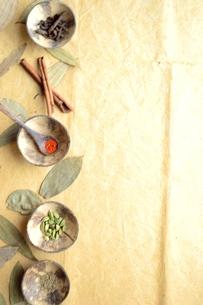 小皿に盛ったスパイス インディアンベイリーフ背景の写真素材 [FYI01177612]