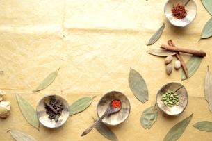 小皿に盛ったスパイス インディアンベイリーフ背景の写真素材 [FYI01177613]