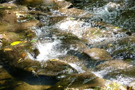 川のせせらぎの写真素材 [FYI01177824]