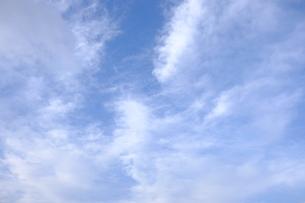 雲海と青空の写真素材 [FYI01177846]
