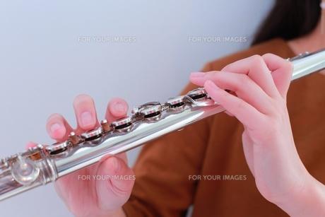 フルートを吹く女性の手もとの写真素材 [FYI01177866]