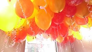 天井に風船いっぱいの写真素材 [FYI01177878]
