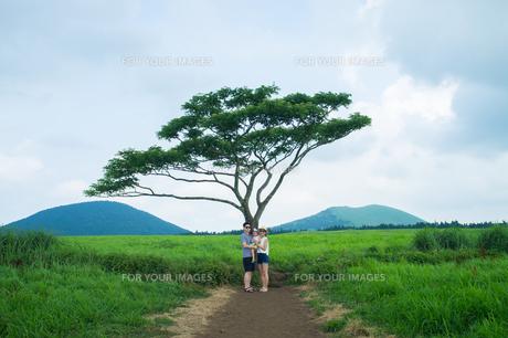 旅行中の家族写真の写真素材 [FYI01177962]