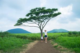 旅行中の母親と息子の写真素材 [FYI01177963]