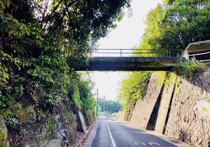 山道に架かる橋の写真素材 [FYI01177995]