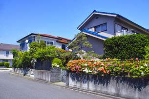 郊外の住宅街の写真素材 [FYI01178161]