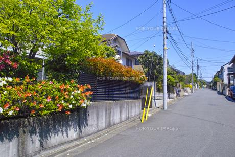 郊外の住宅街の写真素材 [FYI01178162]
