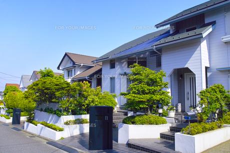 郊外の住宅街の写真素材 [FYI01178165]