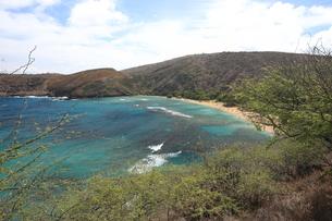 ハナウマ湾 ハワイの写真素材 [FYI01178429]