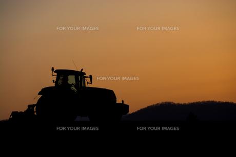 夕暮れの農作業の写真素材 [FYI01178501]