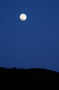 満月の写真素材 [FYI01178612]