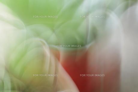 イメージの写真素材 [FYI01178634]