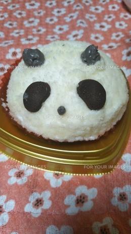 パンダのチョコケーキの写真素材 [FYI01178646]