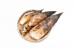 収穫した筍の写真素材 [FYI01178711]