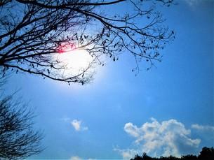 2月の青い空の写真素材 [FYI01178771]