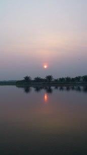 南国湖畔の夜明けの写真素材 [FYI01179207]