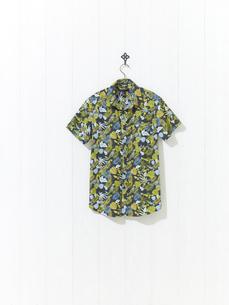 アロハシャツの写真素材 [FYI01179321]