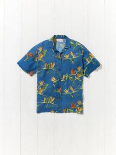 アロハシャツの写真素材 [FYI01179344]