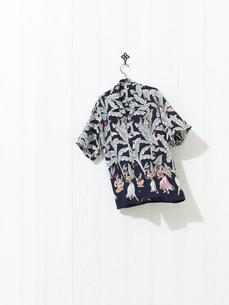 アロハシャツの写真素材 [FYI01179347]
