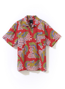 アロハシャツの写真素材 [FYI01179354]