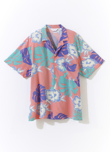 アロハシャツの写真素材 [FYI01179355]