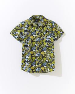 アロハシャツの写真素材 [FYI01179361]