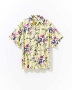 アロハシャツの写真素材 [FYI01179365]