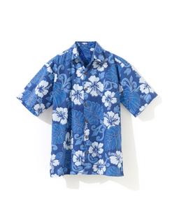アロハシャツの写真素材 [FYI01179367]