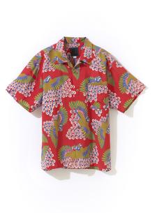 アロハシャツの写真素材 [FYI01179369]