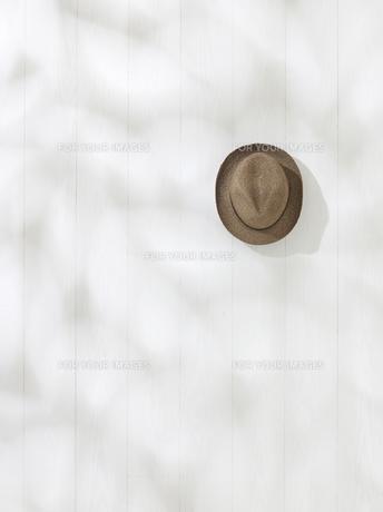 帽子の写真素材 [FYI01179395]