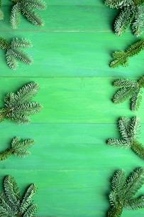 モミの葉のフレーム グリーン背景の写真素材 [FYI01180066]