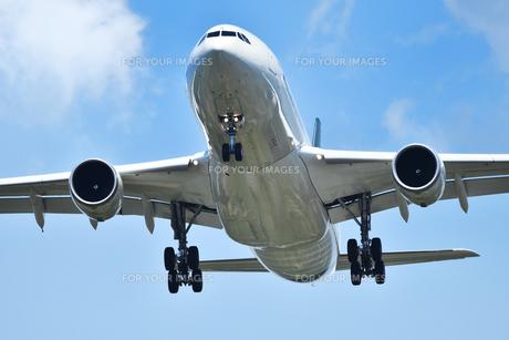 着陸態勢の旅客機の写真素材 [FYI01180346]