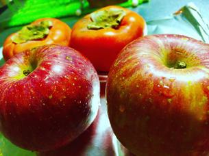 水滴の付いた新鮮なリンゴと柿   果物・食べ物・ヘルシー・シズル感の写真素材 [FYI01180355]