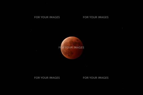 皆既月食の写真素材 [FYI01180823]