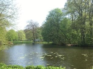 ドイツ 池と木々のある風景の写真素材 [FYI01180838]