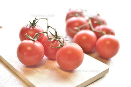房なりトマトの写真素材 [FYI01180884]
