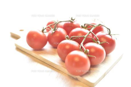 房なりトマトの写真素材 [FYI01180888]