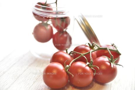房なりトマトの写真素材 [FYI01180892]