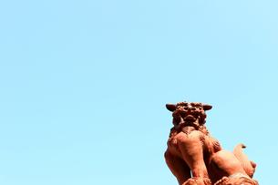 青空の下のシーサーの写真素材 [FYI01180963]