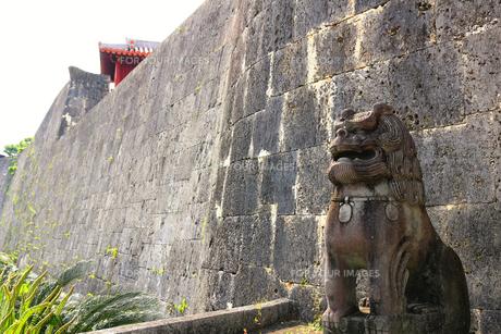 城を守るシーサーの写真素材 [FYI01180968]