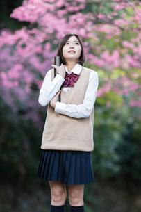 証書筒を持った女子学生の写真素材 [FYI01181393]